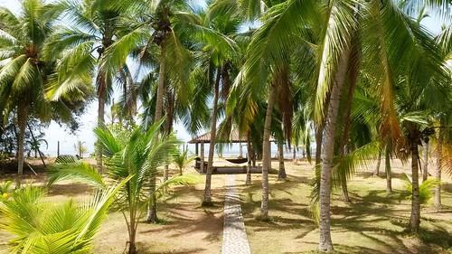 Blick von der Terasse auf den Strand