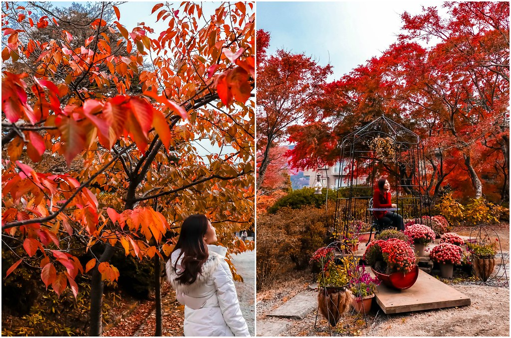hakone-gora-park-autumn-alexisjetsets