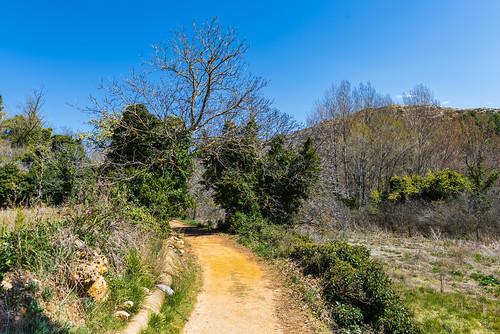 _DSC4023 - Caminos de Anento (Aragón)