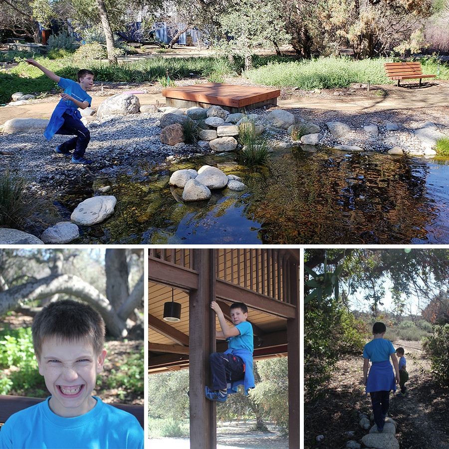 Rancho-Santa-Ana-Botanical-Gardens-Walk-4