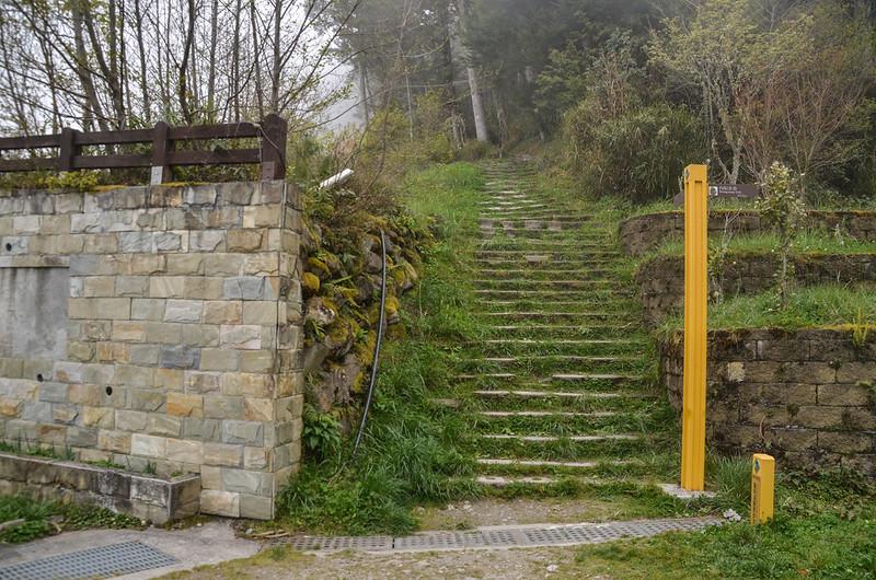 向陽國家森林遊樂區松景步道 1