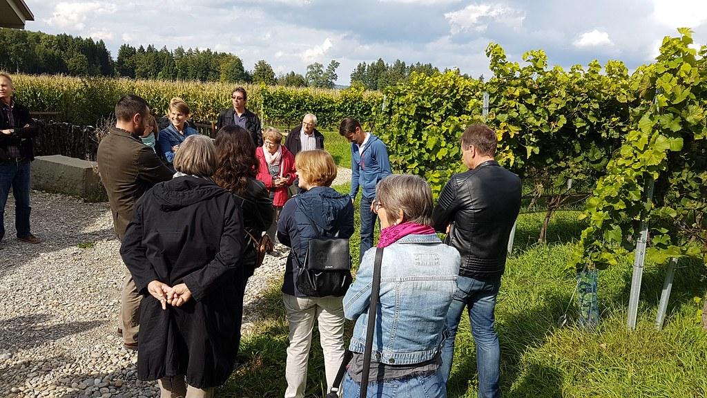 2017-09-17 Besuch beim Weingut Lenz Iselisberg