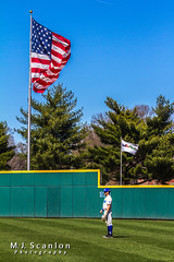 University of Memphis Baseball