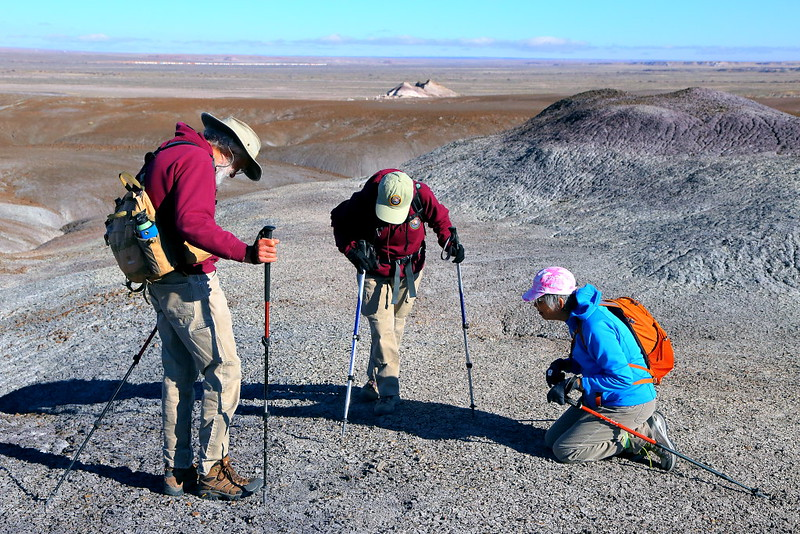 IMG_6610 Hikers Searching for Fossils