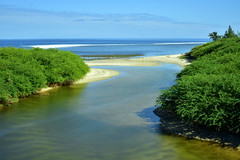 Ravine des Trois Bassins, Reunion Island