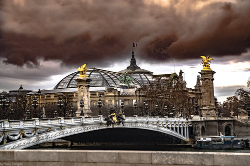 View of the Grand Palais and the Pont Alexandre III Bridge over the Seine River, Paris, France-67-67