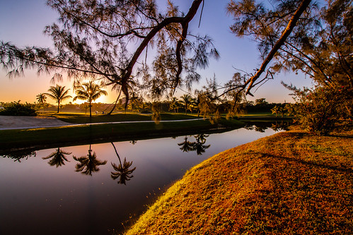 bahamas caribbean island pond bahamar sunrise golf course morning palm reflection travel