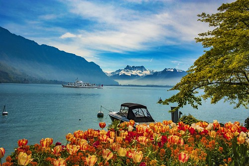 Smoke on the water. Spring time in Montreux. Canton of Vaud , Switzerland. izakigur no. 5445.