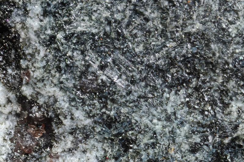 フェロゼードル閃石 / Ferro-gedrite