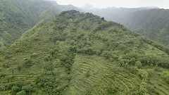 An entire mountainside in north eastern Bali is terraced for rice