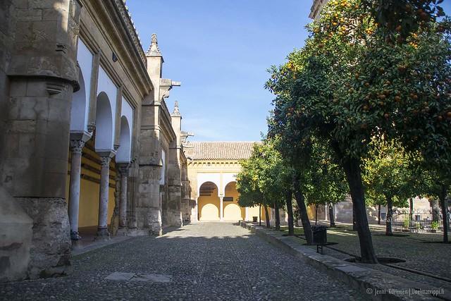 20190210-Unelmatrippi-La-Mezquita-Cordoba-DSC0293