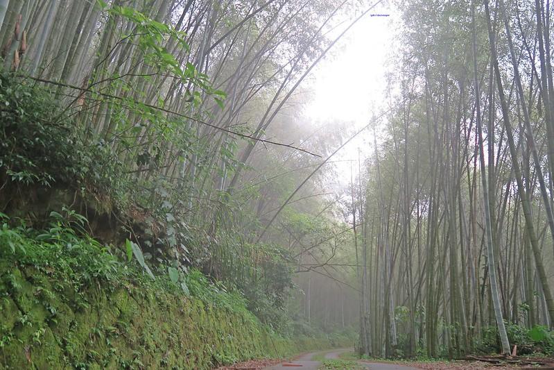 travel-ShiDing-Chiayi-sunrise-17docintaipei (8)