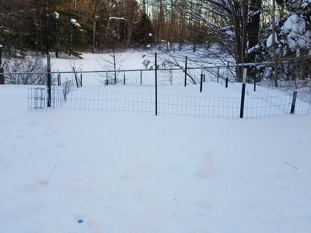 6_snow