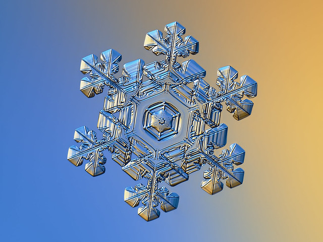 Real snowflake, Canon POWERSHOT A650 IS