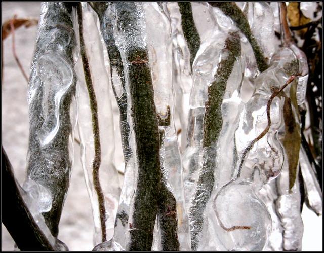 Jeges kompozíció Frozen composition