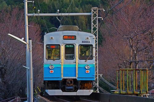 IMGP1305
