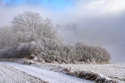*a mix of frost, snow, fog and sun*
