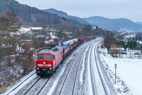 Ludmilla im Winter