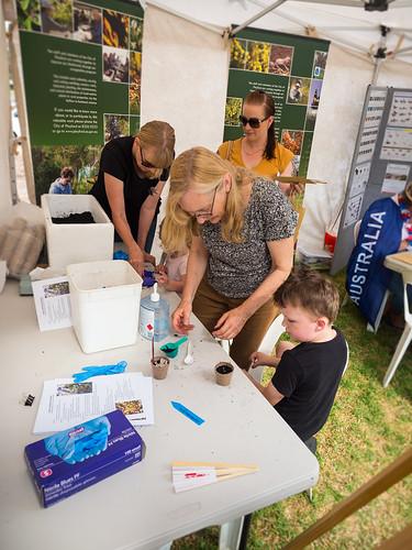COP australia day 2019 - riverside resort - 1260442