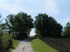 20080916 38049 1017 Jakobus Weg Feld Wald Wiese Durchgang - Photo of Pern