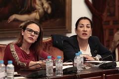 FOTO_Pleno ordinario 20 feberro 2019_15