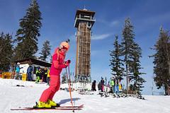 Tipy SNOW tour: Špičák – šumavská rozmanitost