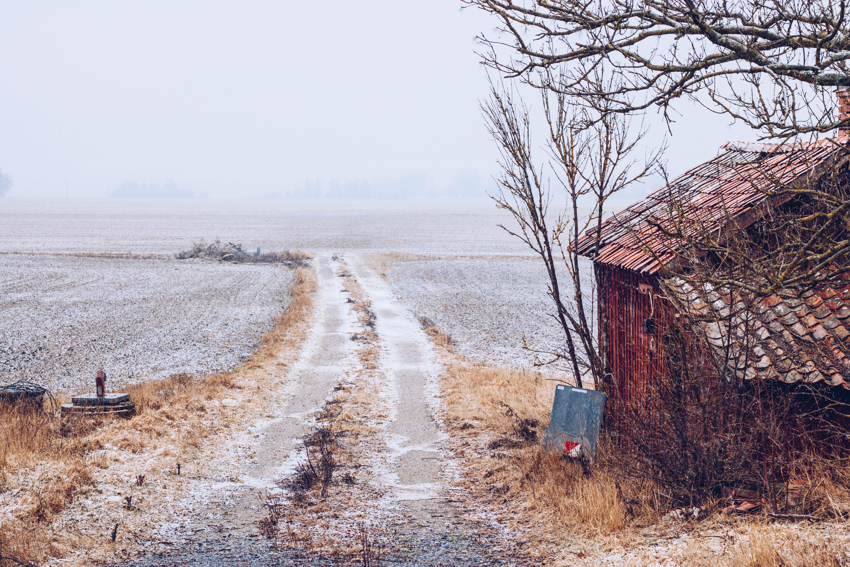 I dimmans land - reaktionista.se