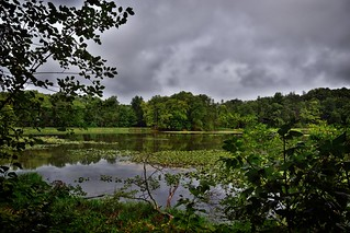 The Beauty of a Lake and a Forested Countryside (Cuyahoga Valley National Park)