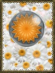 Sunflower Mandala in Daisy PIP & KVAD Frame