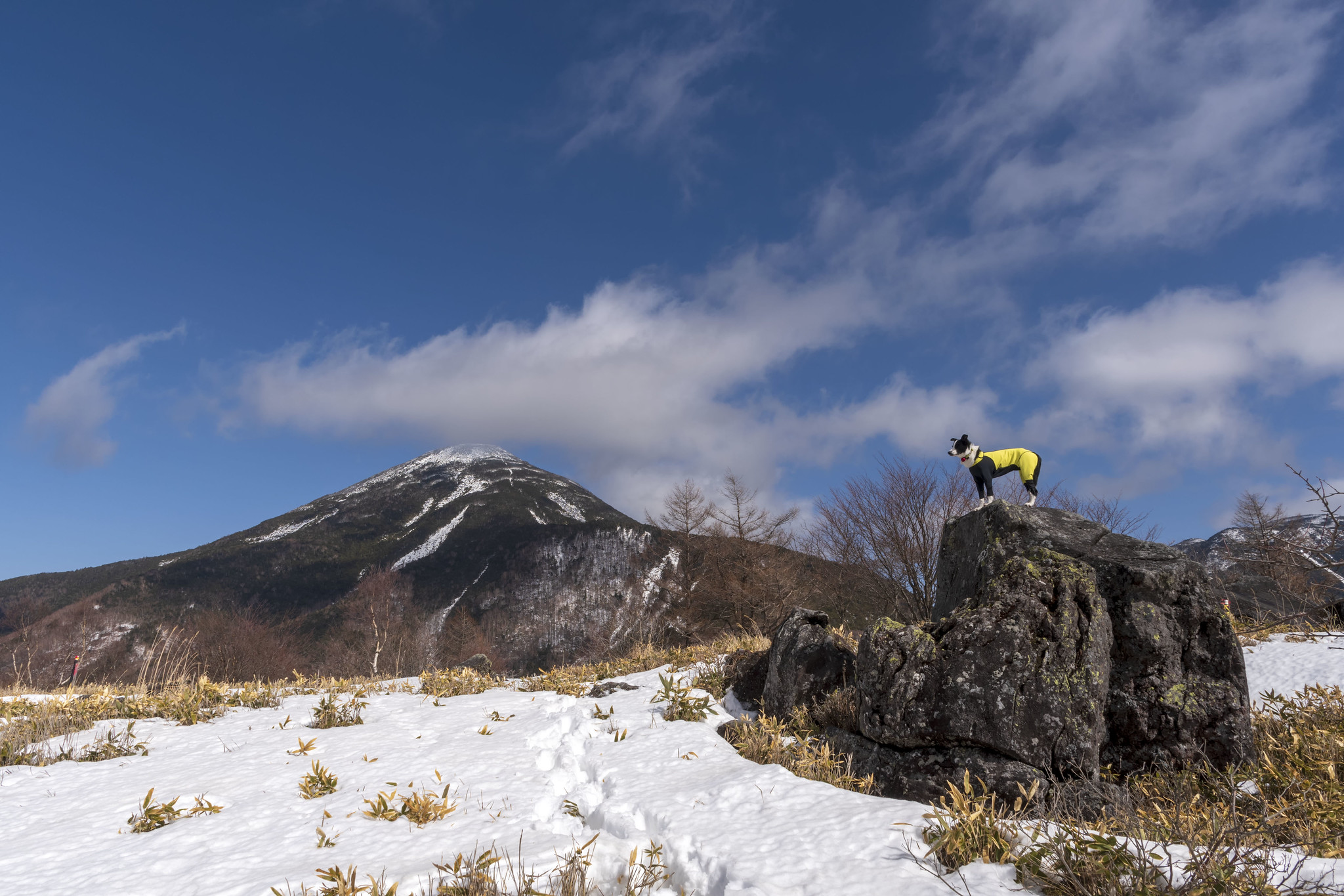八子ヶ峰で雪歩き 2019/2/19-21のまとめ