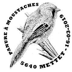 07BIS PANURE À MOUSTACHES Mettet