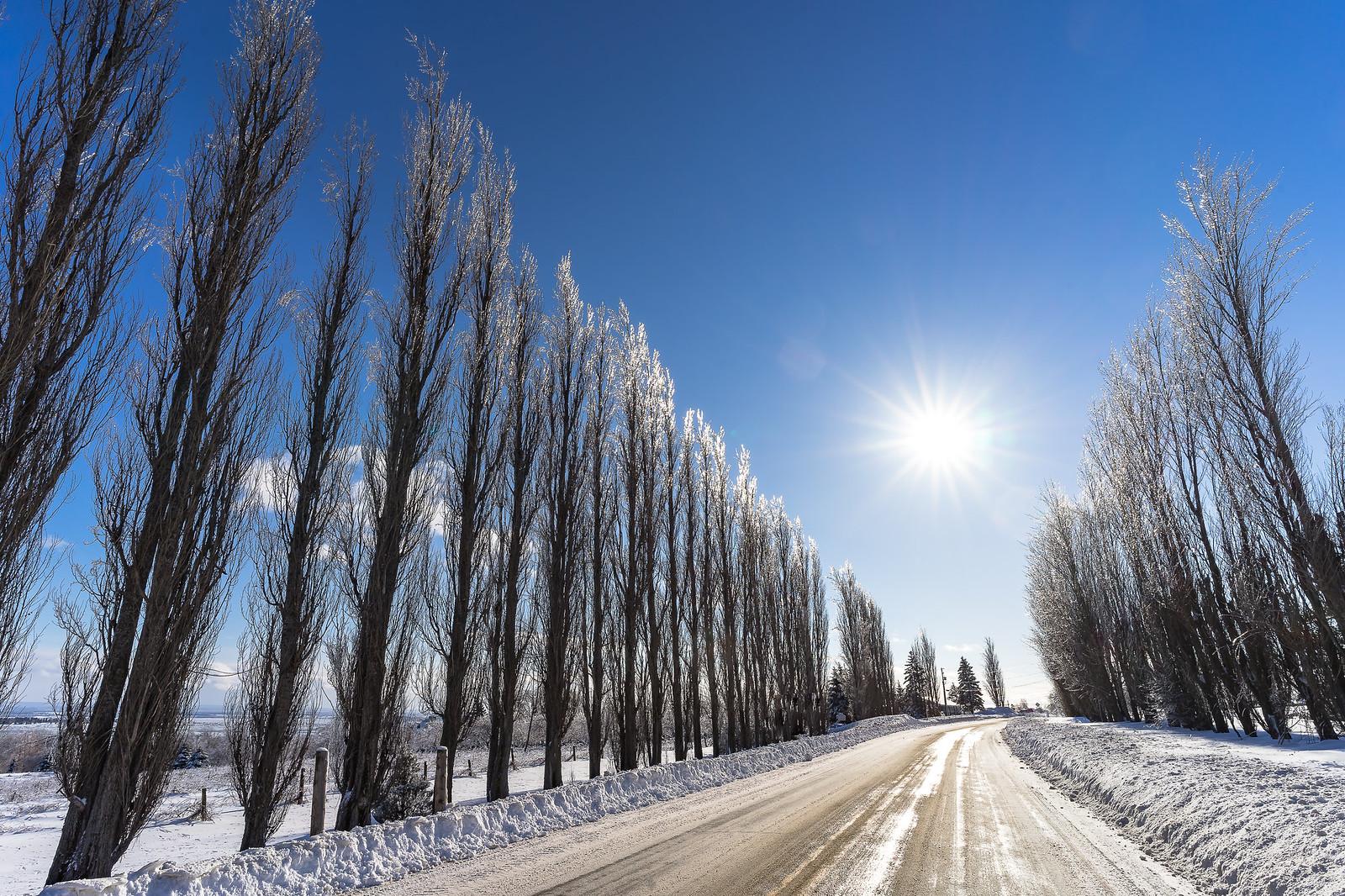Ah ! Comme la neige a neigé... 33019283788_4b0cec292e_h