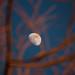 Mond im zunehmenden Stadium