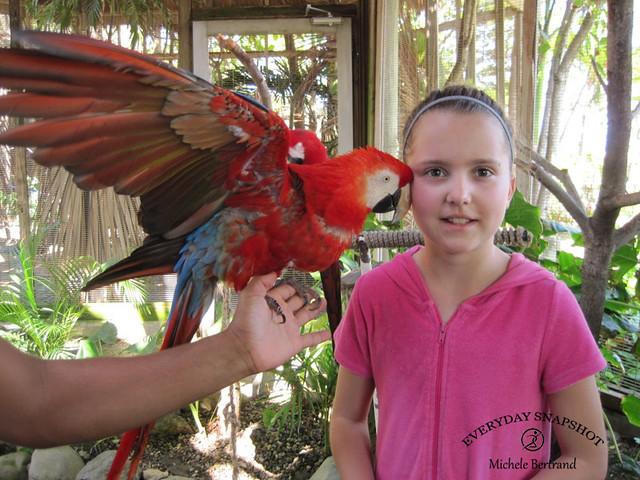 Amber Cove, Dominican Republic (11)