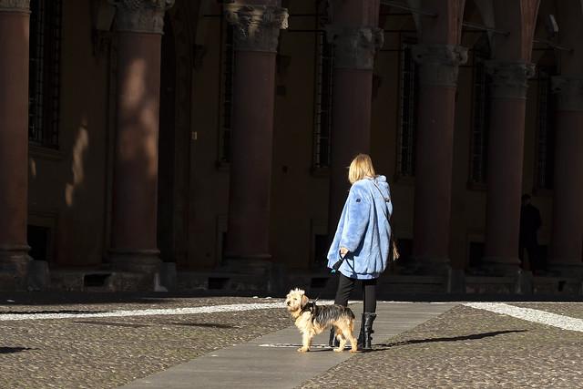 Bologna - Via S.Stefano