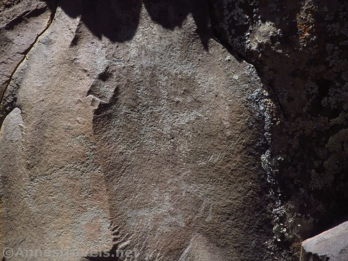 Some of the petroglyphs are pretty faint, but you can still see the goats at the Nampaweap Rock Art Site in Grand Canyon-Parashant National Monumnet, Arizona