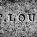St. Louis Brick by Ben at St. Louis Energized
