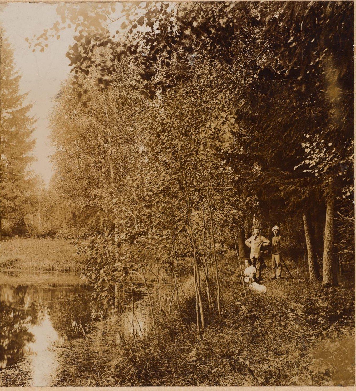 1900-е. Парк. Пруд