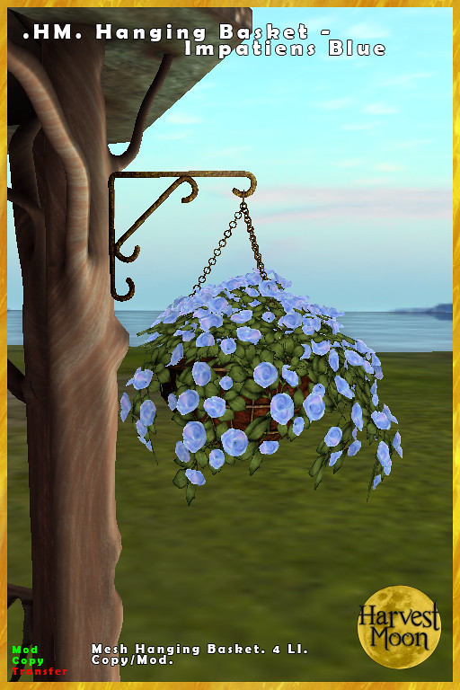 Harvest Moon – Hanging Basket – Impatiens Blue