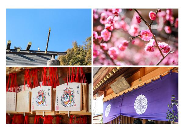 梅の花が咲いた八事塩竈神社 名古屋市