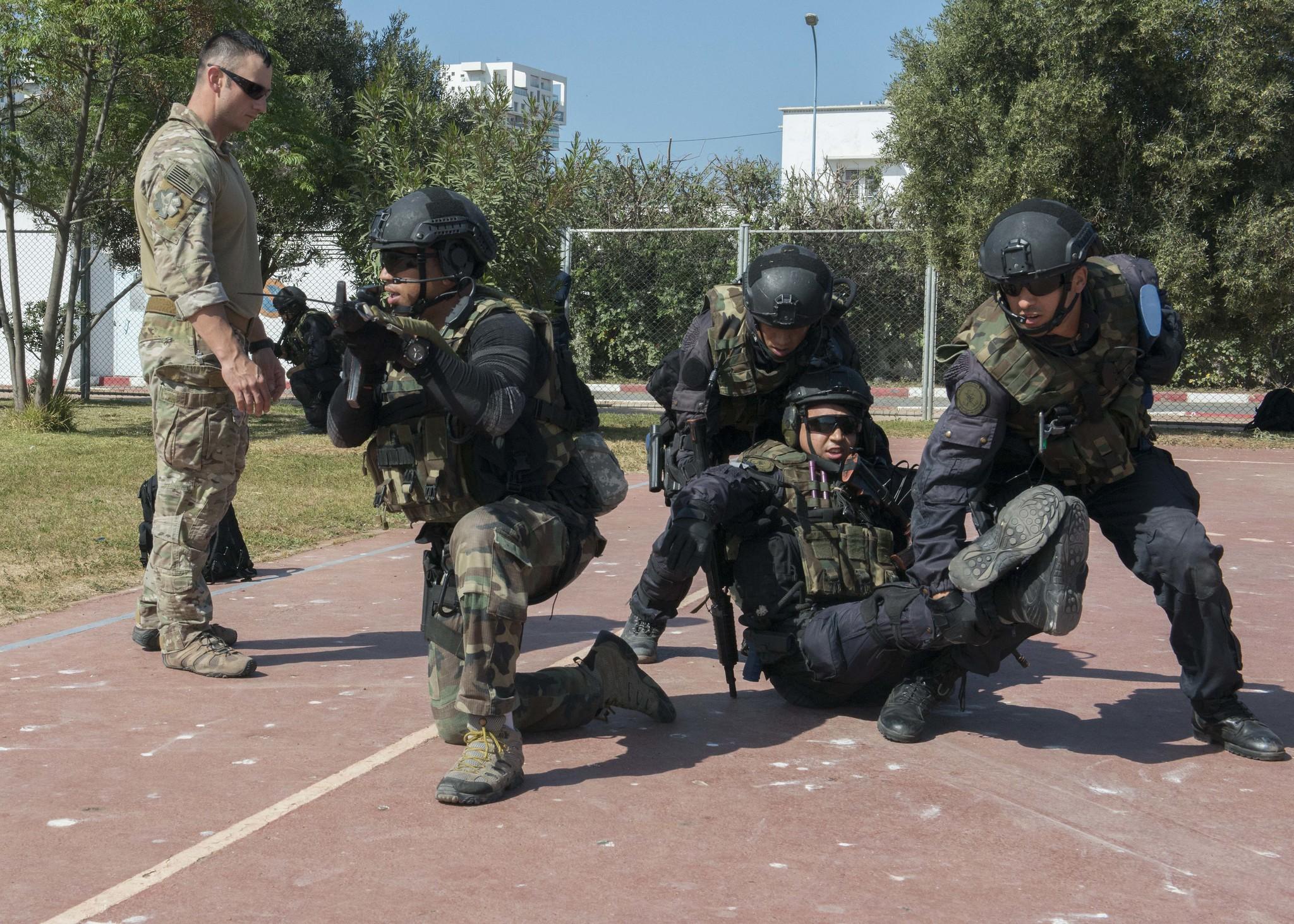 Armée Tunisienne / Tunisian Armed Forces / القوات المسلحة التونسية - Page 15 46579384425_a25ca67df4_k