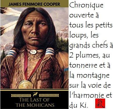 Chronique du Ki et de l'Harmonie