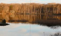 Dusk on the Pond