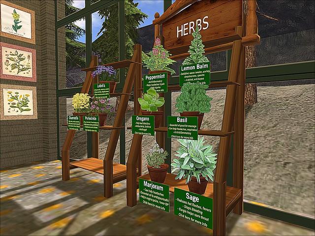 Dr. Foster's Herbal Greenhouse -Herbal Plyings