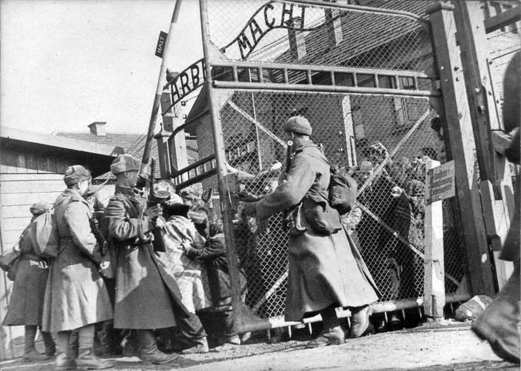 Risultati immagini per Auschwitz liberata dai sovietici immagini