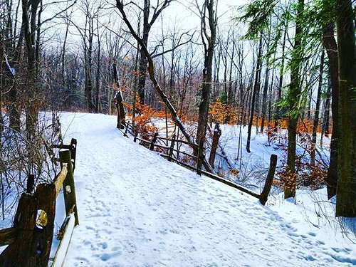 The Dumas Bridge from the other side. I hope we all have a quiet spot someplace that reminds us of a favorite book! #KnoxFarm #eastaurora #wny #winter #snow #nature #hiking