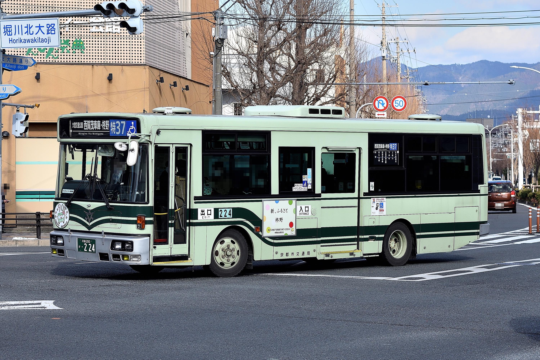 kyotoshi_224