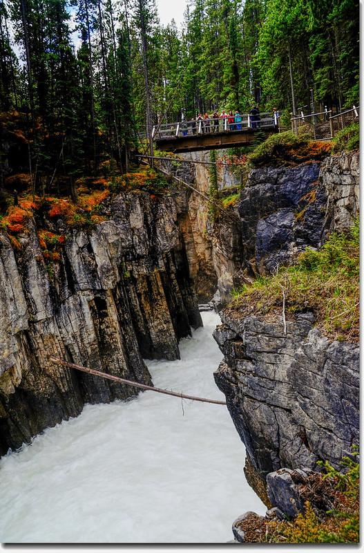 Sunwapta Falls  (9)