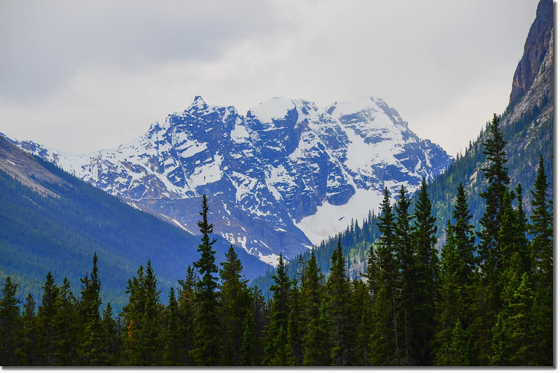 Mount Xerxes from picnic area along Icefield Parkway