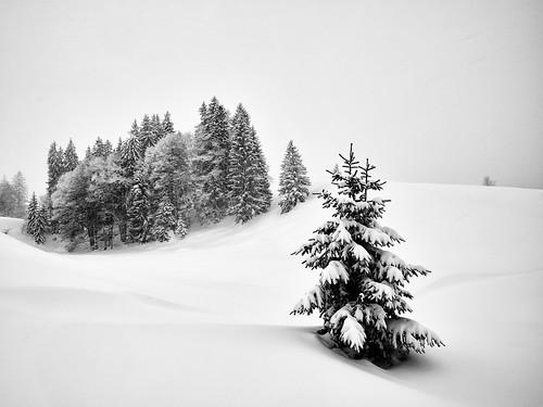 It is still Winter Time! Enjoy :-)